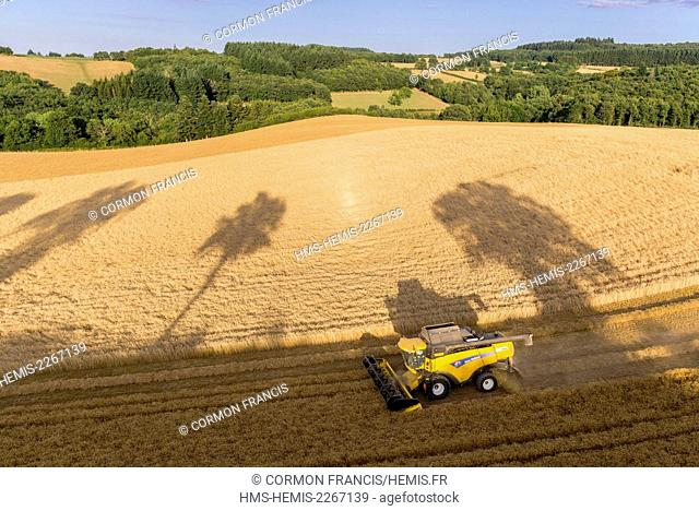France, Puy de Dome, Saint Angel, harvest a wheat field (aerial view)
