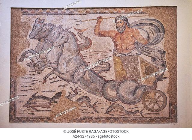 Algeria, Timgad City, Roman ruins of Timgad, UNESCO, (W. H. ), Timgad Archaelogical Museum, Mosaic