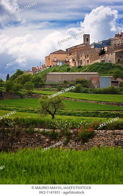 Vista general del poble de Savallà del Comptat, Conca de Barberà, Catalunya, Spain