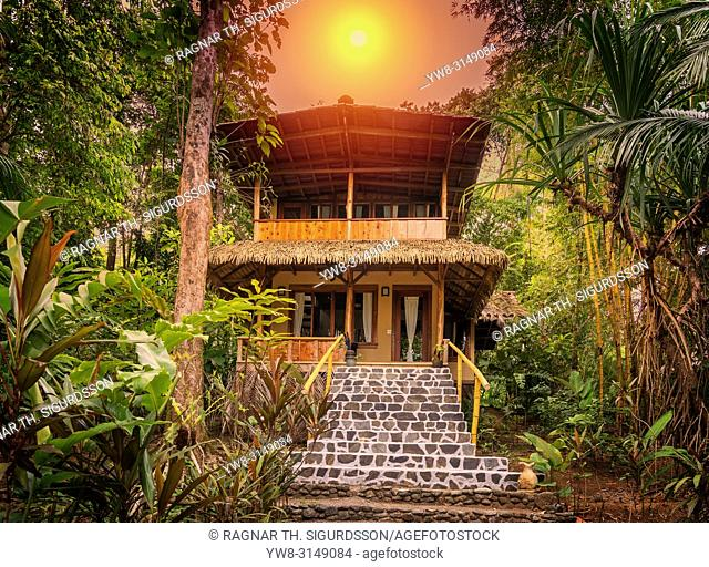 Rainforest, Corcovado National Park, Osa Peninsula, Costa Rica