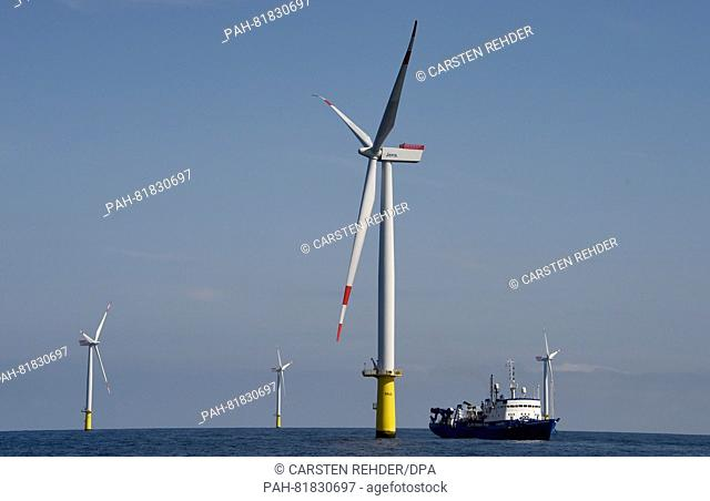 Wind turbines located on the North Sea some 30 kilometres off Helgoland, Germany, 04 July 2016. The Meerwind Sued-Ost wind farm operated by WindMW includes a...