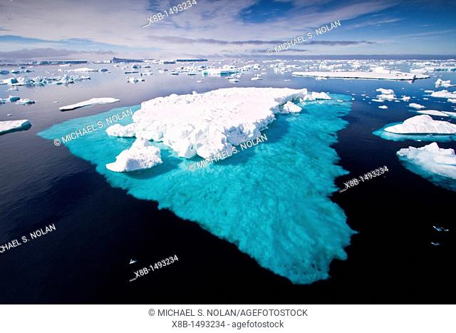Icebergs and sea ice in the Weddell Sea on the eastern side of the Antarctic Peninsula during the summer months, Southern Ocean  MORE INFO An increasing number...