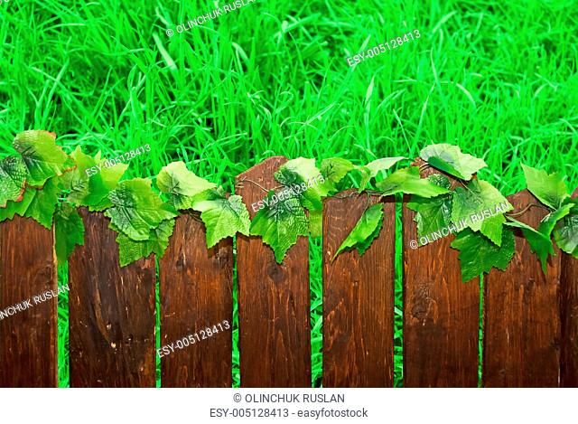 Wooden brown picket fence