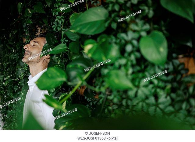 Businessman in green office relaxing