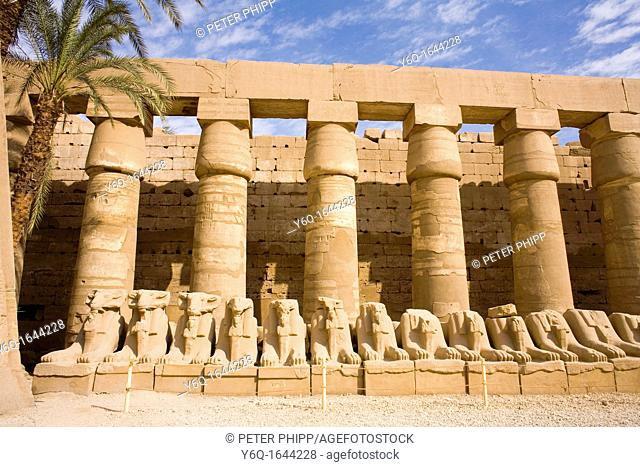 The Avenue of Rams at Temple of Karnak in Luxor Egypt