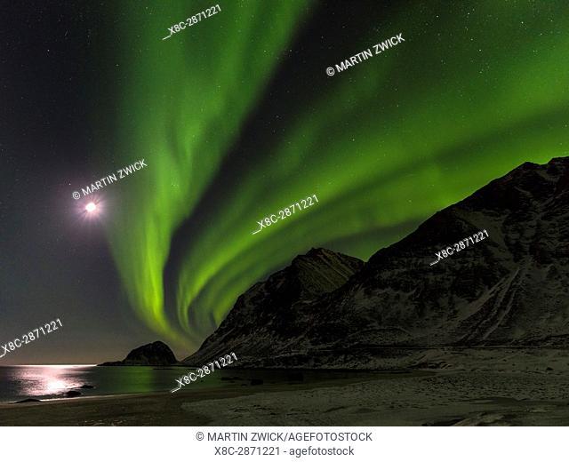 Northern Lights over Haukland Beach, island Vestvagoy. The Lofoten islands in northern Norway during winter. Europe, Scandinavia, Norway, February