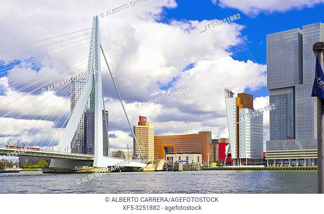 Erasmus Bridge, Nieuwe Maas River, Modern Architecture, Rotterdam, Holland, Netherlands, Europe