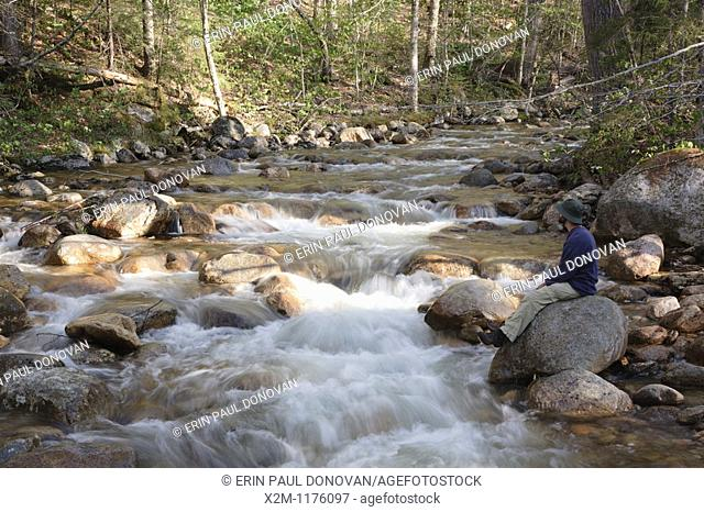 A hiker explores the Mad River which is on the side of Greeley Ponds Trail in the White Mountains, New Hampshire USA