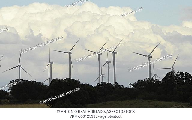Wind energy. Albacete province. Spain