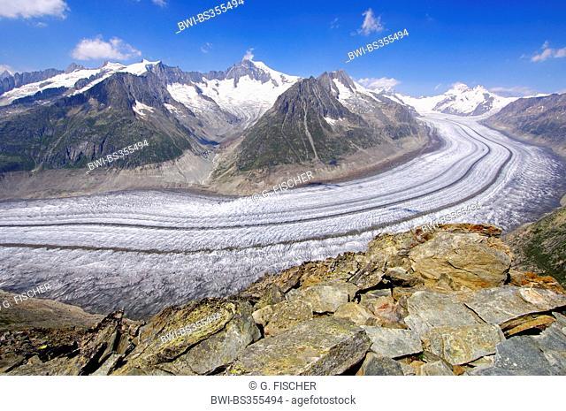 view from Mount Eggishorn to the Aletsch Glacier, UNESCO world heritage Jungfrau-Aletsch-Bietschhorn region, Switzerland, Valais, Riederalp