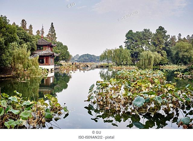 View of aquatic plants and traditional building on Westlake, Hangzhou, China