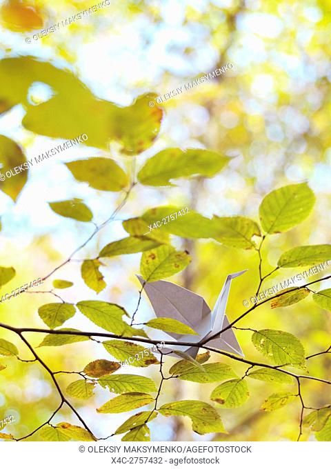 Origami paper crane sitting on a branch with yellow leaves in autumn nature