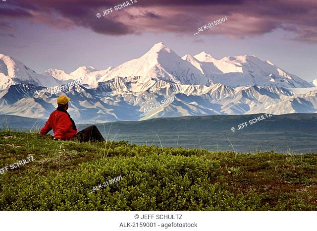 Male Tourist Views Mt.Mckinley & Alaska Range Near Wonder Lake Denali National Park Alaska Summer
