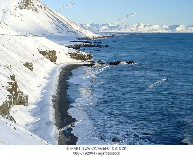 Laekjavik, coast near Lon during winter. Landscape in the eastern fjords of Iceland between Hoefn and Djupivogur. europe, northern europe, iceland, february