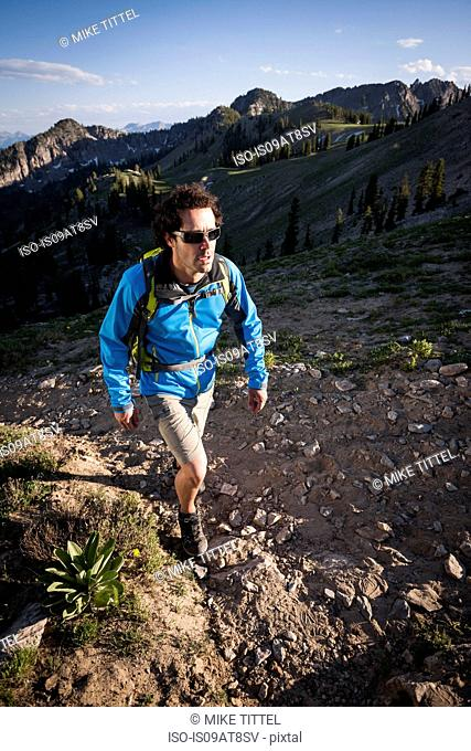 Hiker on Sunset Peak trail, Catherine's Pass, Wasatch Mountains, Utah, USA