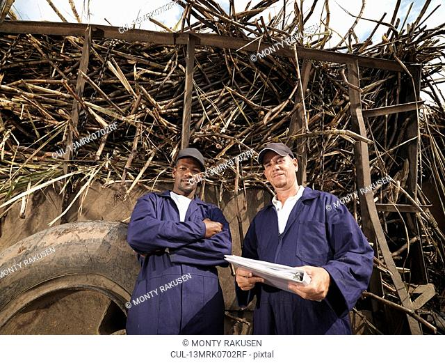 Workers With Truck Of Sugar Cane