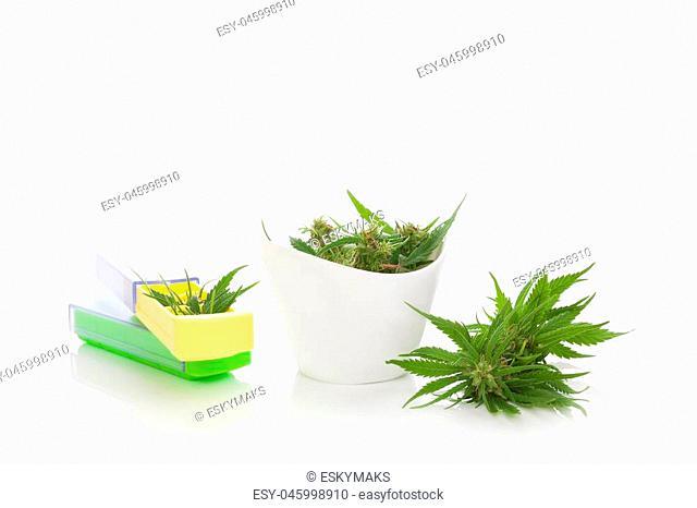 Medical marijuana. Marijuana buds in pill box isolated on white background