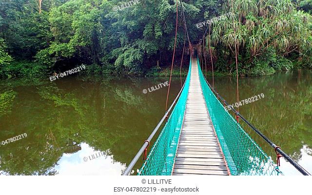 Sandakan Rainforest Discovery Centre In Sepilok, Sabah, the Malaysian part of Borneo. An early morning. Suspension bridge over the lake and Rainforest trees