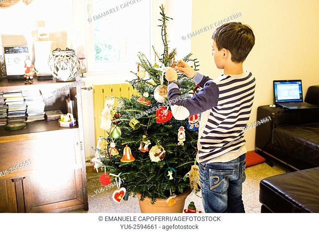Boy preparing the Christmas tree at home