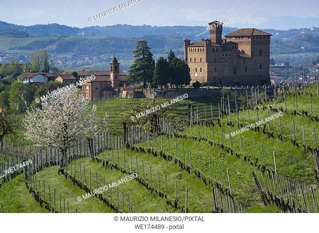 Spring view of the Castle of Grinzane Cavour Unesco heritage in the territory of the Langhe Piedmont Italy