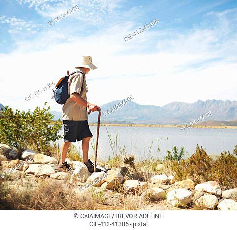 Male hiker with backpack and walking stick at sunny summer lakeside