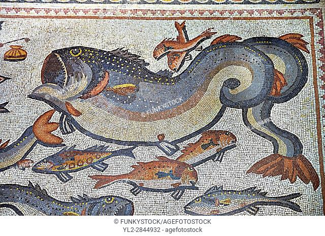 Fish and marine life from the 3rd century Roman mosaic villa floor from Lod, near Tel Aviv, Israel. The Roman floor mosaic of Lod is the largest and best...