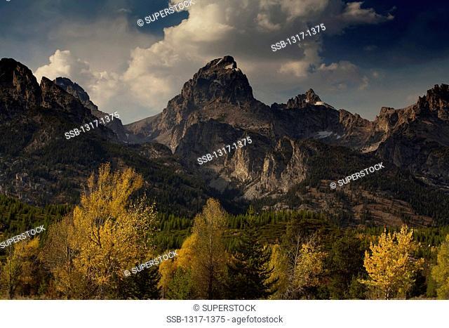 USA, Wyoming, Grand Teton National Park, Teton Range, Autumn landscape