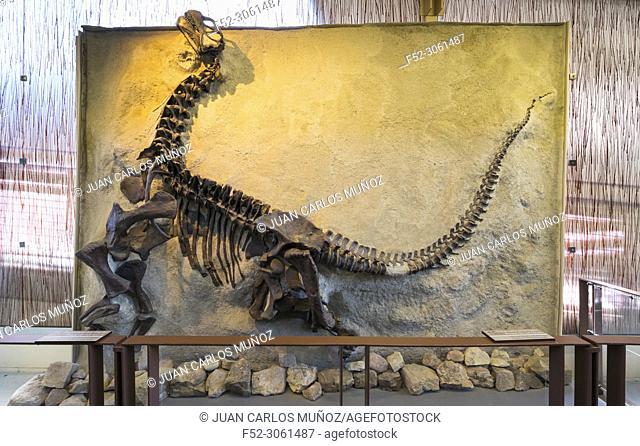 Quarry Exhibit Hall, Dinosaur National Monument, Utah, Usa, America