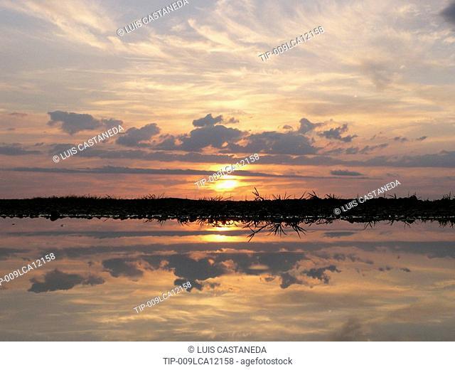 USA, Florida. The Everglades Natl. Park at dusk