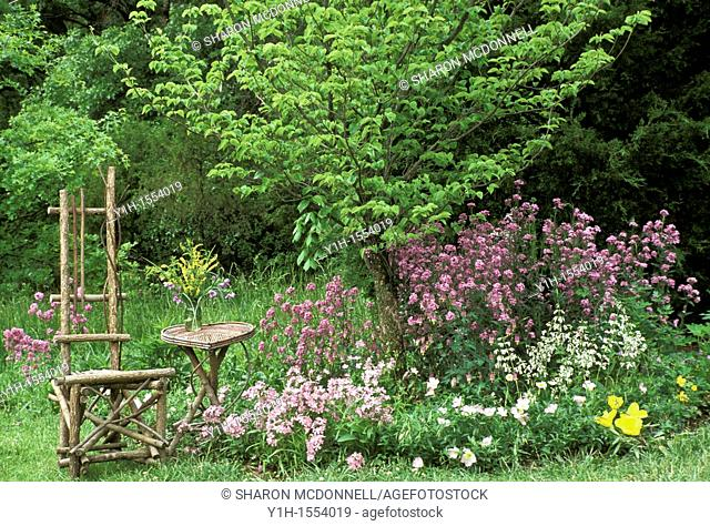 Rustic chair and heart-shaped table handmade from red stemmed dogwood sit in a flower garden of native wildflowers Midwest