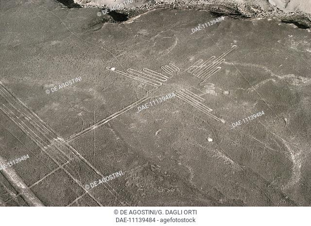 The hummingbird, geoglyph, Nazca Lines (UNESCO World Heritage List, 1994), Nazca, Peru