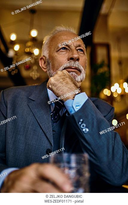Portrait of elegant senior man in a bar with tumbler