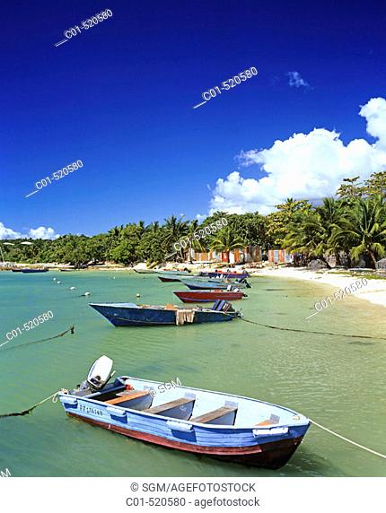 Moored fishing boats and tropical beach with palm trees. Guadeloupe, Caribbean, France