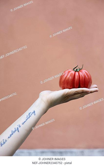 Person holding tomato