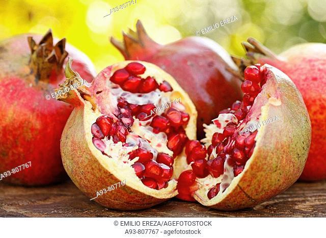 Pomegranates (Punica granatum)