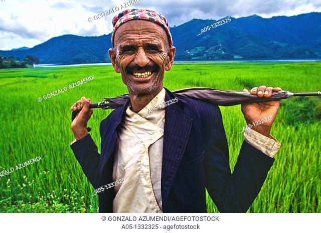 Man  Rice field  Pokhara valley  Nepal