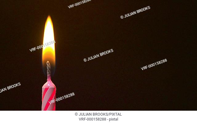 pink birthday candle flame flickers and burns - seamless loop