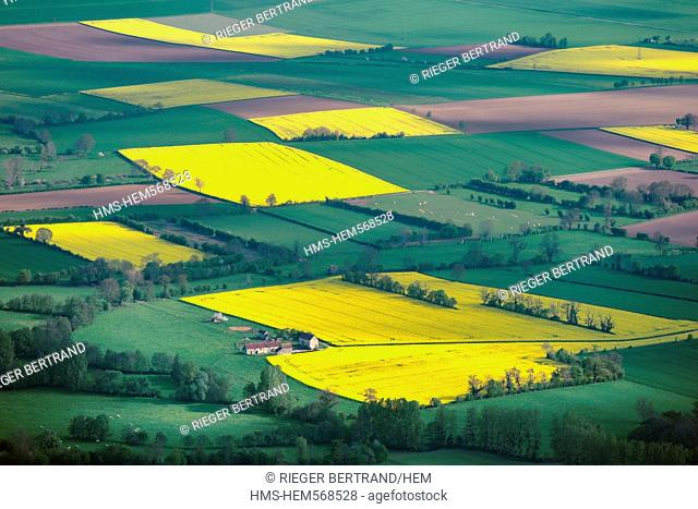 France, Eure, field of rape in blossom aerial view