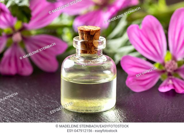 A bottle of common mallow essential oil with fresh blooming malva sylvestris plant in the background
