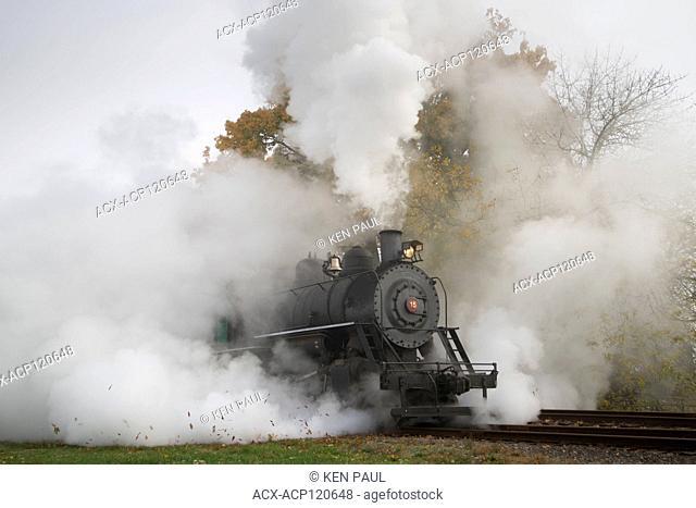 The Chehalis-Centralia Railroad fall excursion steam train. Chehalis, Washington, USA