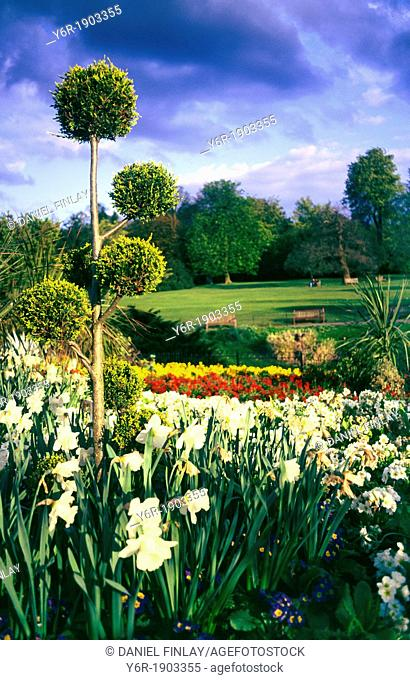 Spring on Golder's Hill in Hampstead, London, England, on an atmospheric evening