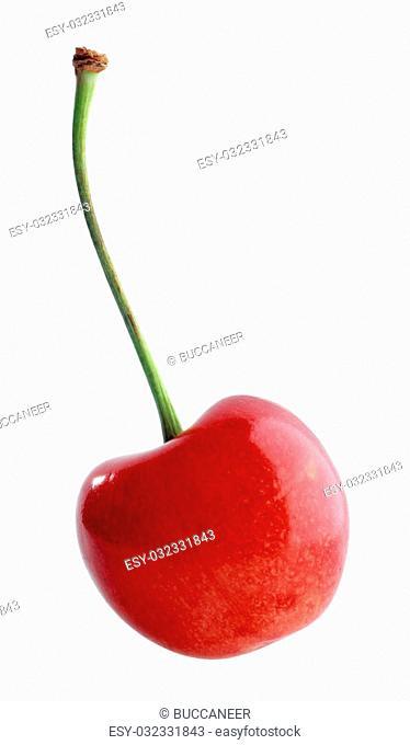 Single sweet cherry on white background
