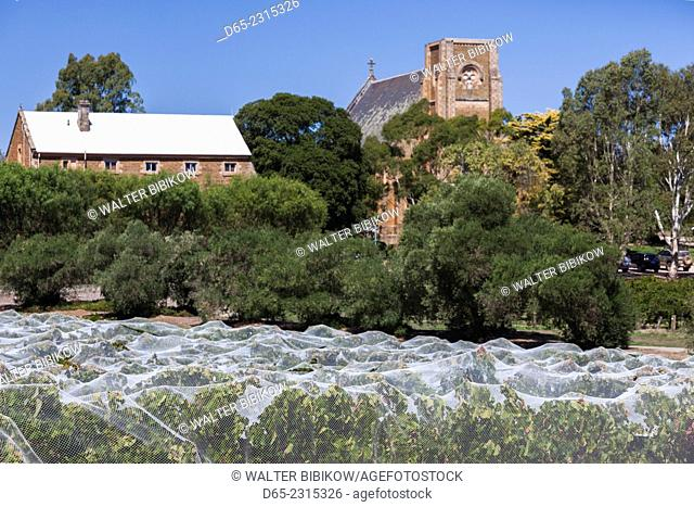 Australia, South Australia, Clare Valley, Sevenhill, Sevenhill Cellars, last remaining Jesuit-owned winery in Australia, founded in 1851, St