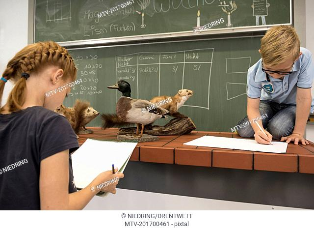Students making animals sketch on their sketch pads in biology class, Fürstenfeldbruck, Bavaria, Germany
