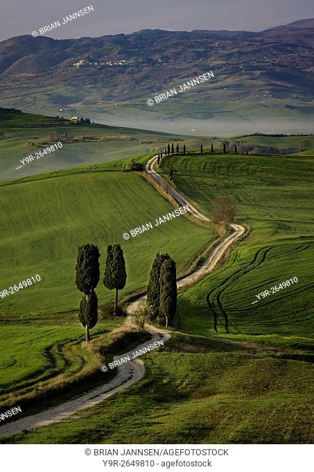 Cypress trees and winding road to villa near Pienza, Tuscany, Italy