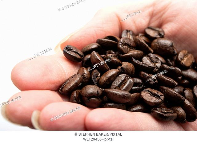 Womans hand holding a handfull of loose fresh roasted brown coffee beans