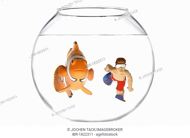 Toy clown fish and a boy swimming with diving goggles and flippers in a fish bowl, illustration
