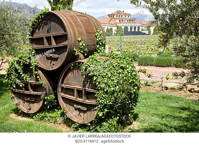 Wine barrel cellar, Laguardia, Rioja Alavesa, Araba, Basque Country, Spain, Europe