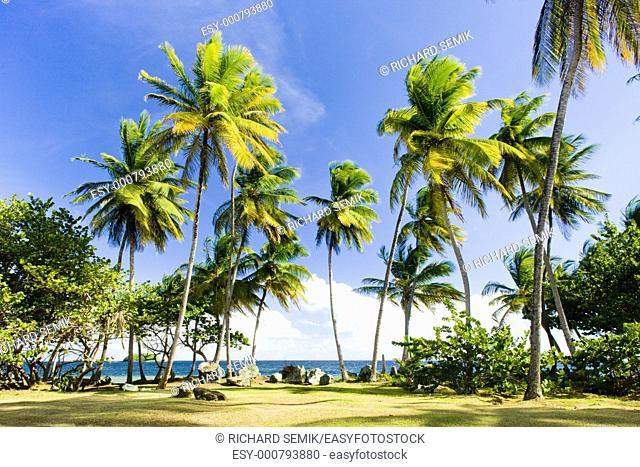 Granby Point, Tobago