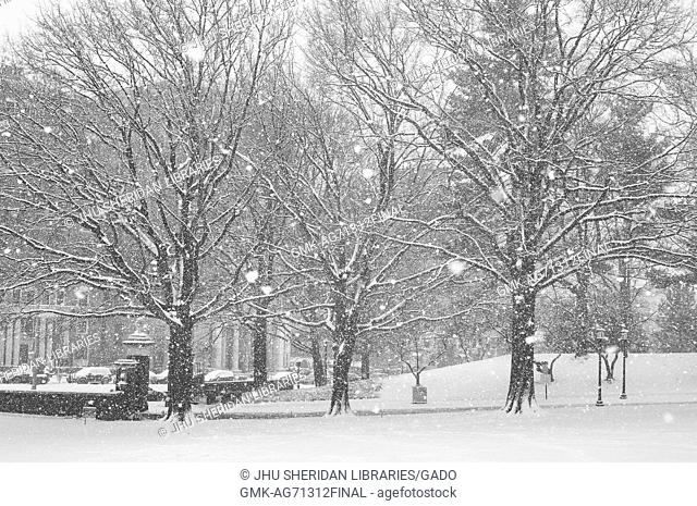 The east entrance to the Homewood campus of Johns Hopkins University in Baltimore, Maryland is covered in snow, and more snow is falling, 2015